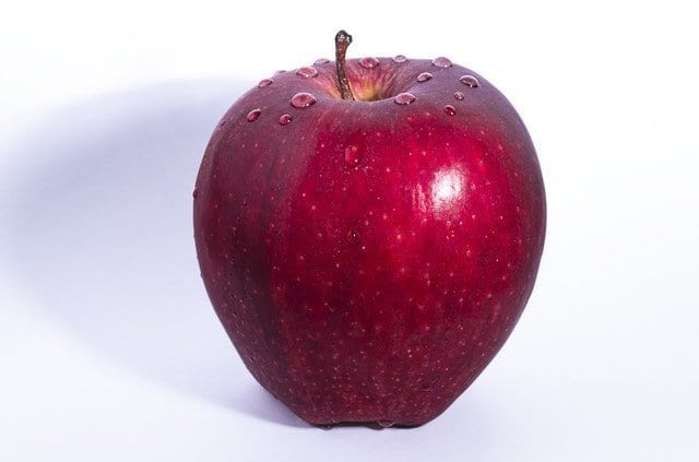 Human food your dog can eat - apple