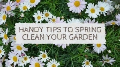 Handy Tips To Spring Clean Your Garden