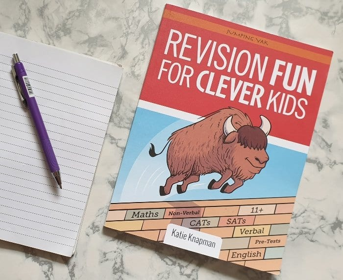 Revision Fun For Clever Kids workbook