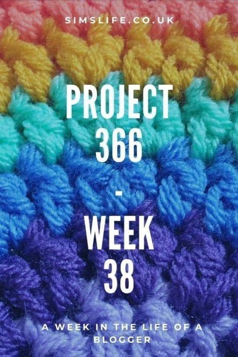 Project 366 Week 38 Pinterest