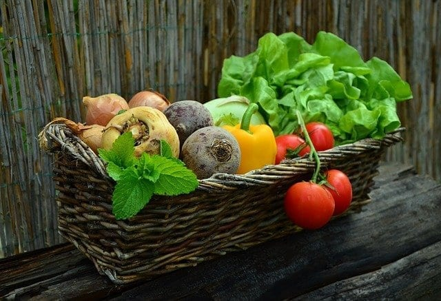 Making Plant-Based Diets Easier to Stick To